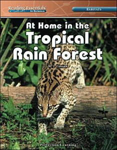 At Home in the Tropical Rain Forest