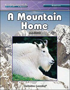 A Mountain Home