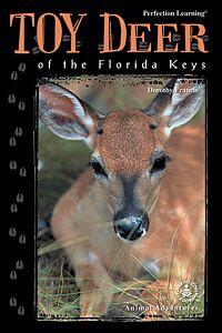 Toy Deer of the Florida Keys