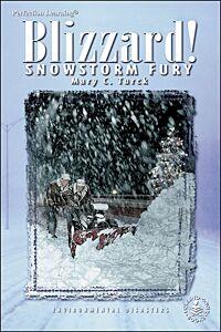 Blizzard! Snowstorm Fury