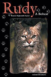 Rudy: A Bobcat