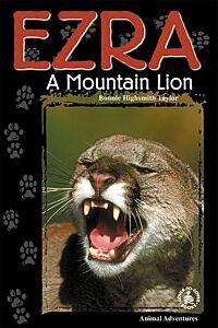 Ezra: A Mountain Lion