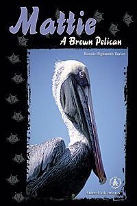 Mattie: A Brown Pelican