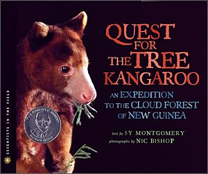 Quest for the Tree Kangaroo: An Expedition to the Cloud Forest of New Guinea