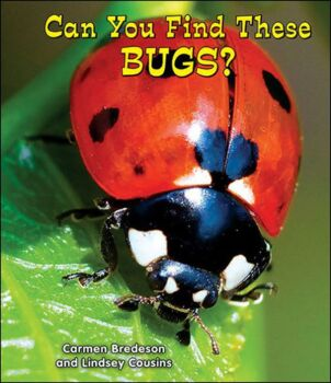 Can You Find These Bugs?