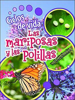 Ciclos De Vida De Las Mariposas Y Las Polillas (Butterflies And Moths)